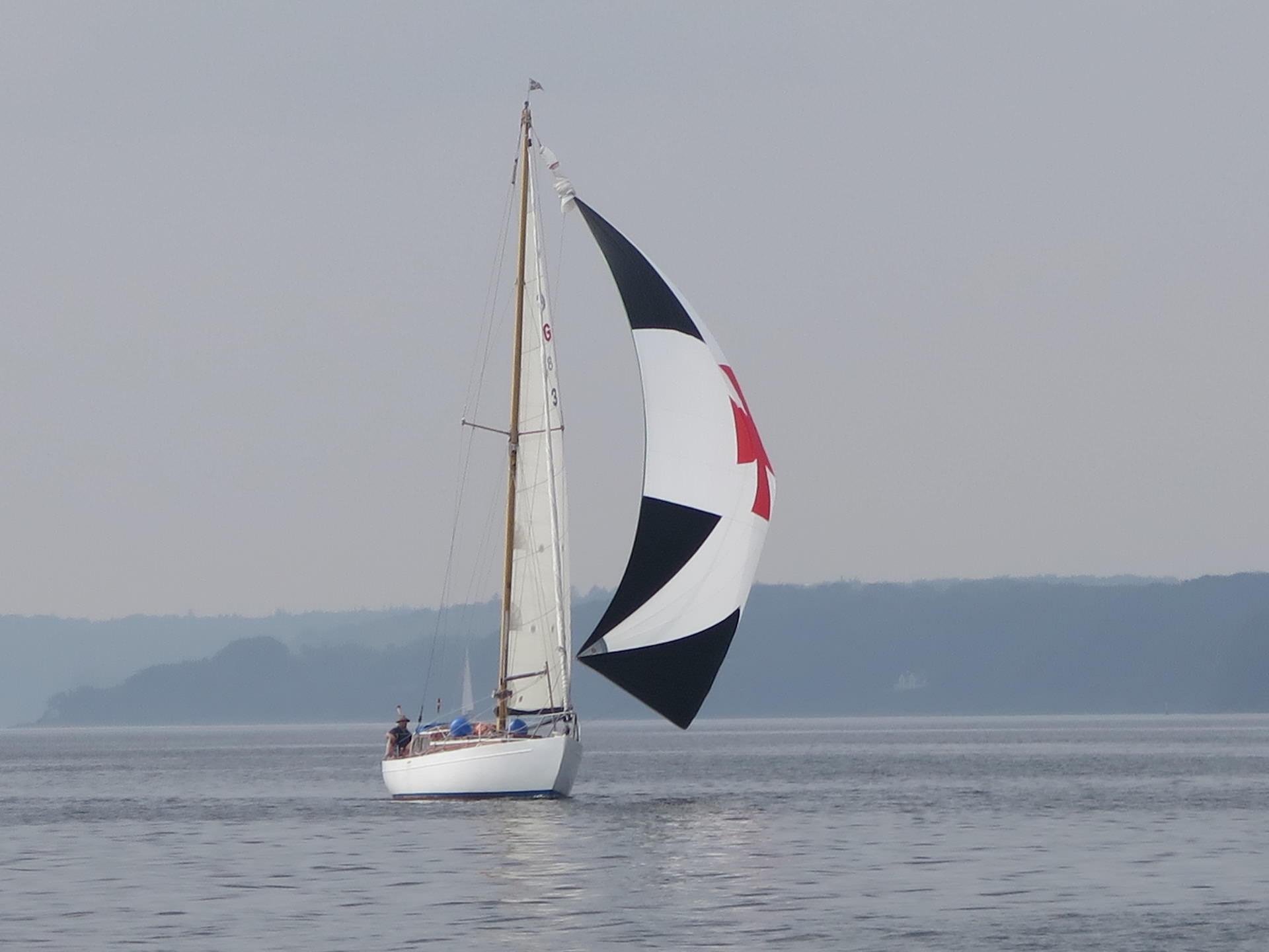 Coaching on the boat - eine spannende Reise für ganz neue Blickwinkel